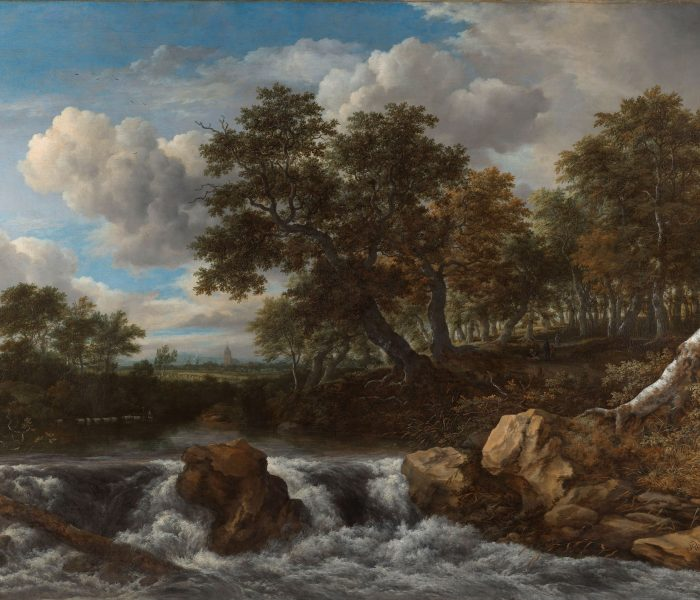 6. Landschap met waterval